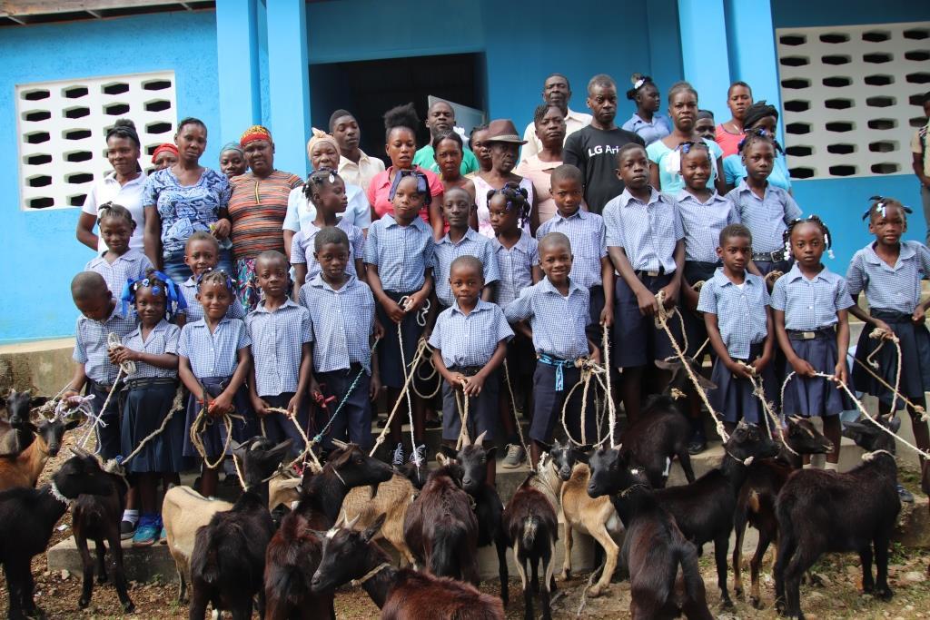 hesse goat group pix.JPG