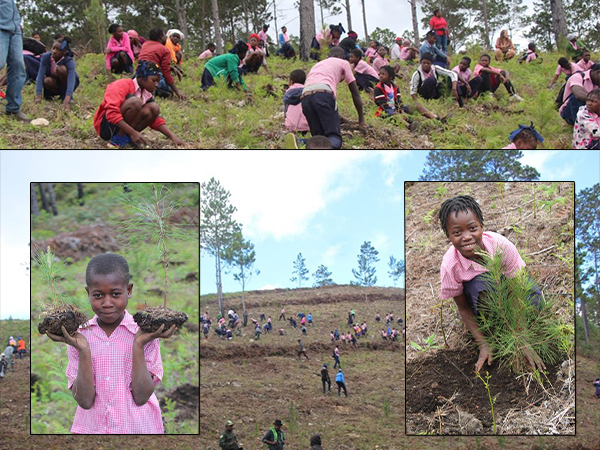 bois negresse star of hope and Reforestation by grace community church great bend